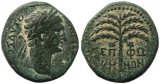 Roman coin of Trajan - Judaea, Sepphoris